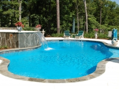 Freeform gunite pool with raised spa