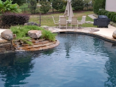 Gunite freeform pool with pool landscaping