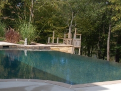 Gunite pool 8