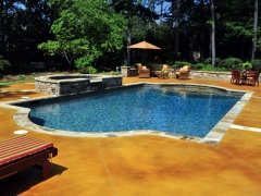 Gunite pool with raised spa and concrete deck